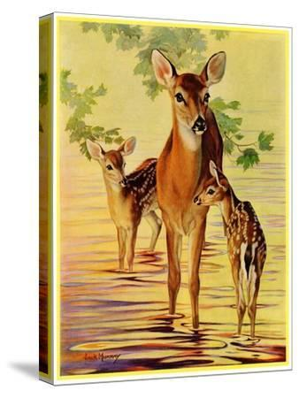 """""""Doe and Fawns,""""April 29, 1933 by Jack Murray"""