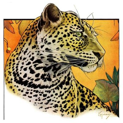"""""""Leopard,""""August 29, 1931 by Jack Murray"""