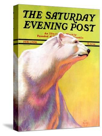 """Polar Bear,"" Saturday Evening Post Cover, February 1, 1936 by Jack Murray"