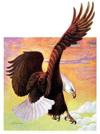 """""""Soaring Bald Eagle,""""October 28, 1933"""