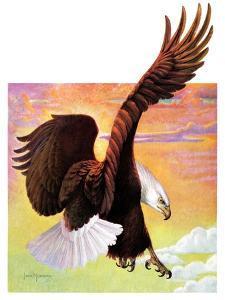 """Soaring Bald Eagle,""October 28, 1933 by Jack Murray"