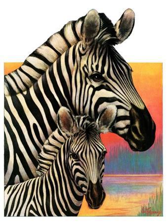 """Zebras,""June 25, 1932 by Jack Murray"