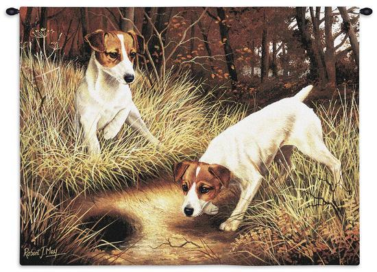 Jack Russell-Robert May-Wall Tapestry