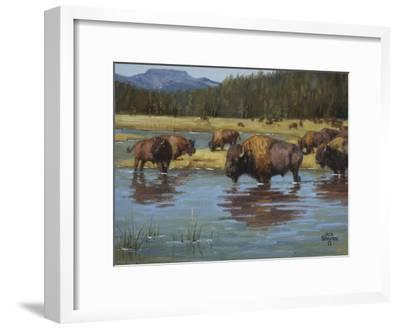 Buffalo Crossing