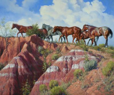 Colored Clay and Quarterhorses