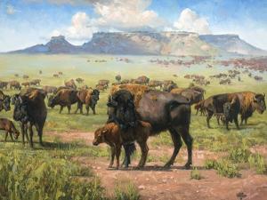 Spirit of the Plains by Jack Sorenson