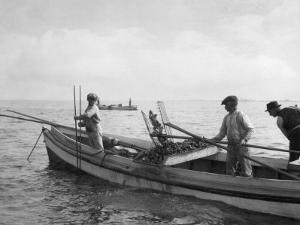 People Tonging Oysters Near Nanticoke by Jacob Gayer