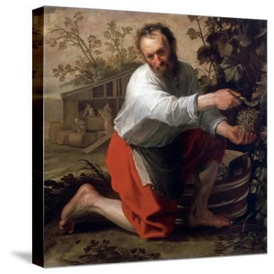 Winegrower, 1628