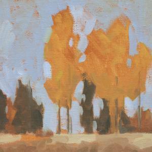 Golden Seasons I by Jacob Green
