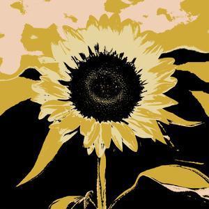 Pop Art Sunflower IV by Jacob Green