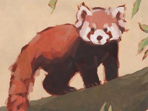 Red Panda I by Jacob Green