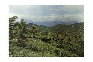 Eastern Jamaica's Landscape Is Tropical Due to Larger Rainfall by Jacob J. Gayer