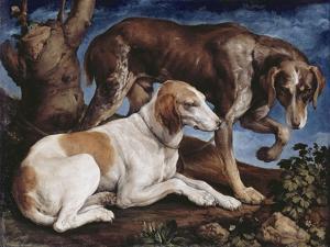 Deux chiens de chasse attachés à une souche by Jacopo Bassano