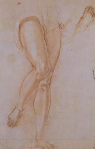 Study of Legs for St. Michael the Archangel Displayed in the Uffizi Gallery by Jacopo da Carucci Pontormo