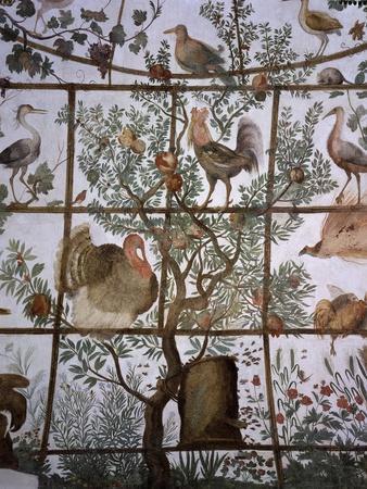 Beehive and Birds in Pergola, 1576-77 Fresco, Pavilion of Ferdinand De Medici