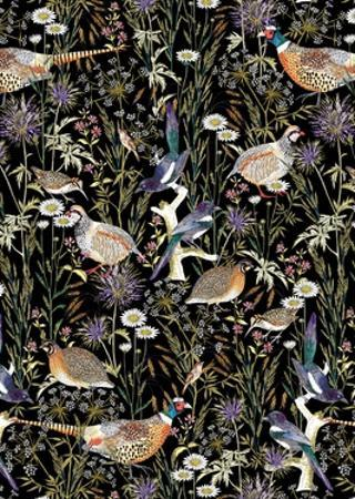 Woodland Edge Birds