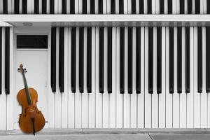 Cello at the Door by Jacqueline Hammer
