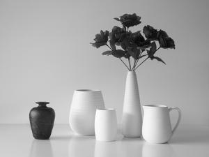 Still Life in Black and White by Jacqueline Hammer