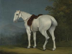 A Lady's Grey Hunter, C.1806 by Jacques-Laurent Agasse