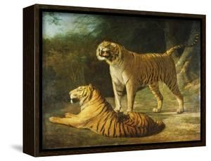 A Tiger and Tigress at the Exeter 'Change Menagerie in 1808 by Jacques-Laurent Agasse