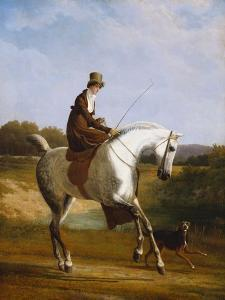 Miss Cazenove on a Grey Hunter, a Dog Running Alongside by Jacques-Laurent Agasse
