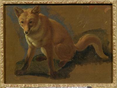 Study of a Fox (Oil on Panel)