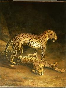 Two Leopards Lying in the Exeter Exchange, 1808 by Jacques-Laurent Agasse