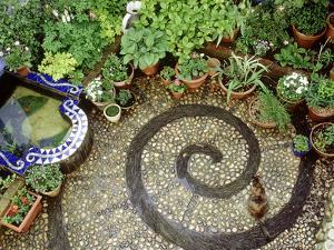 Pebble Patio with Swirl Design Small Mosaic Raised Pond, Plants in Pots, Brighton by Jacqui Hurst