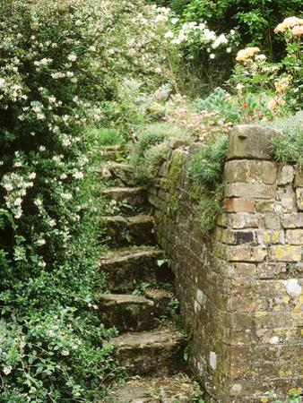 Stone Steps, Beside Old Brick Wall by Jacqui Hurst