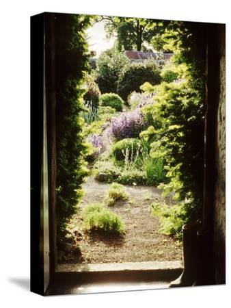 View Through Doorway Framed with Taxus to Country Flower Garden, Northumberland