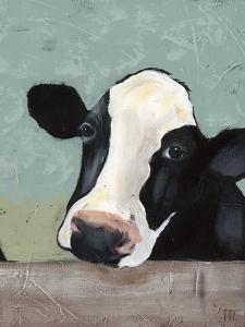 Holstein Cow III by Jade Reynolds