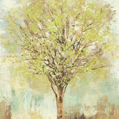 https://imgc.artprintimages.com/img/print/jade-tree_u-l-q132agk0.jpg?p=0