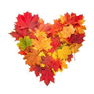 Colored Autumn Leaves In Heart Shape Isolated On White Background by Jag_cz