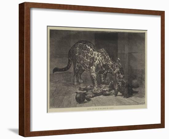 Jaguar and Cubs at the Jardin Des Plantes-Auguste Andre Lancon-Framed Premium Giclee Print