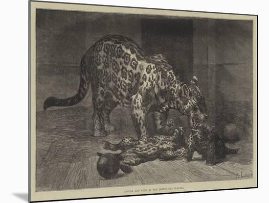 Jaguar and Cubs at the Jardin Des Plantes-Auguste Andre Lancon-Mounted Premium Giclee Print
