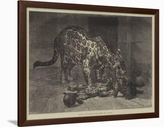 Jaguar and Cubs at the Jardin Des Plantes-Auguste Andre Lancon-Framed Giclee Print