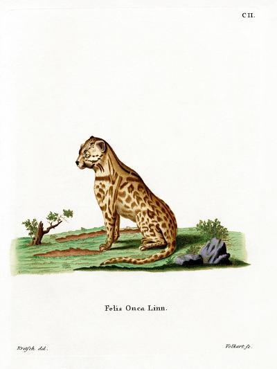 Jaguar--Giclee Print