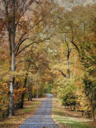 Autumn Passage 2