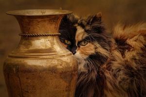 Behind the Antique Vase by Jai Johnson