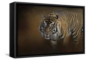 Bengal Stare by Jai Johnson