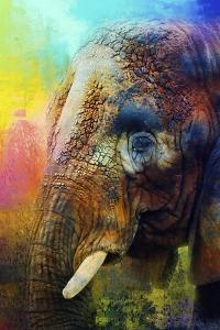 Colorful Expressions Elephant by Jai Johnson