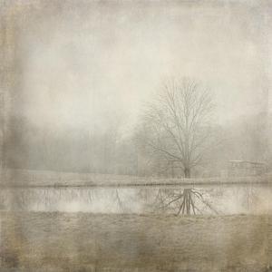 Country Pond by Jai Johnson