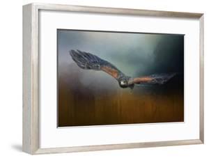 Flight of the Harris Hawk by Jai Johnson