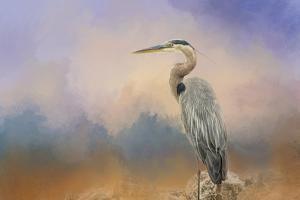 Heron on the Rocks by Jai Johnson