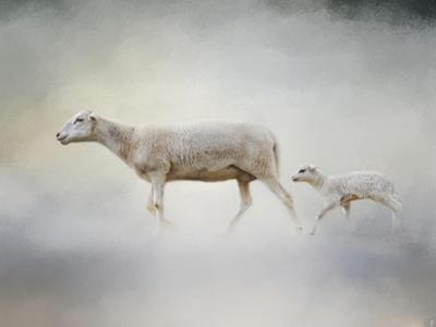 In My Mothers Footsteps Sheep and Lamb