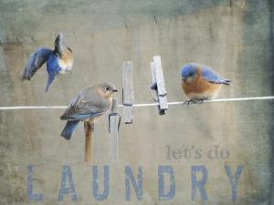 Laundry Day Bluebirds by Jai Johnson