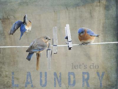 Laundry Day Bluebirds by Jai Johnson