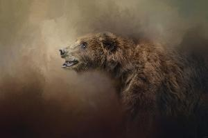 Morning Grizzly by Jai Johnson