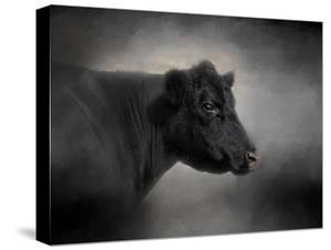 Portrait of the Black Angus by Jai Johnson