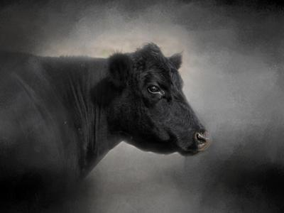 Portrait of the Black Angus by Jai Johnson